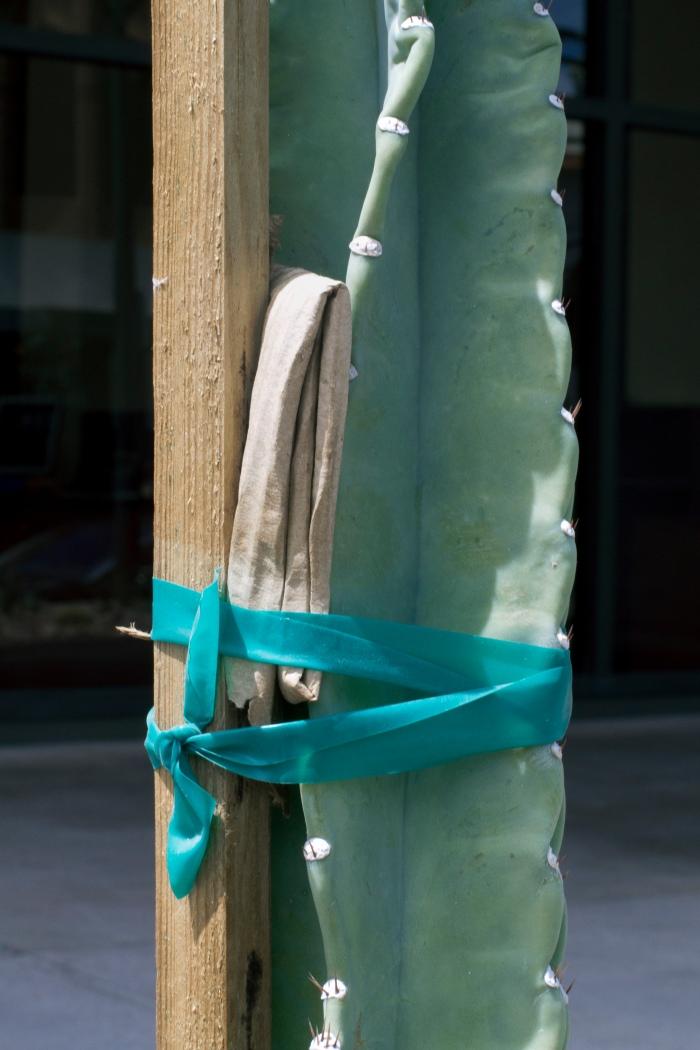Saman Kamyab, Untitled Strap, Plant #5, 2013.