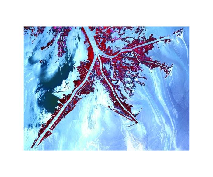 I mai 2010 registrerte satelitten Terra dette bildet av oljelekkasjer fra British Petroleums Deepwater Horizon i Mississippi-deltaet.