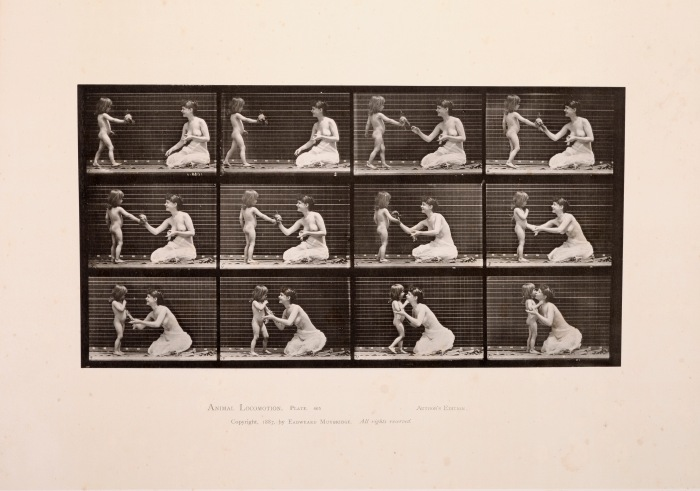 Eadweard Muybridge, Animal Locomotion, Plate 465, 1887. Tilhører Preus museums samling.