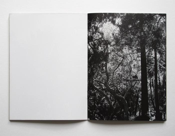 Fra «To . . . . . .» (Angle 8°) av Christina Leithe Hansen.