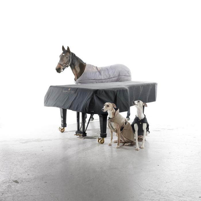 Steinar Christenen- Steinway & Sons, 2012, Courtesy WILLAS contemporary