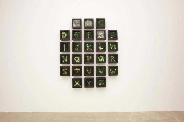 """Katharina Barbosa Blads """"The Alphabet in Babel"""" på Kristiansand Kunsthall."""