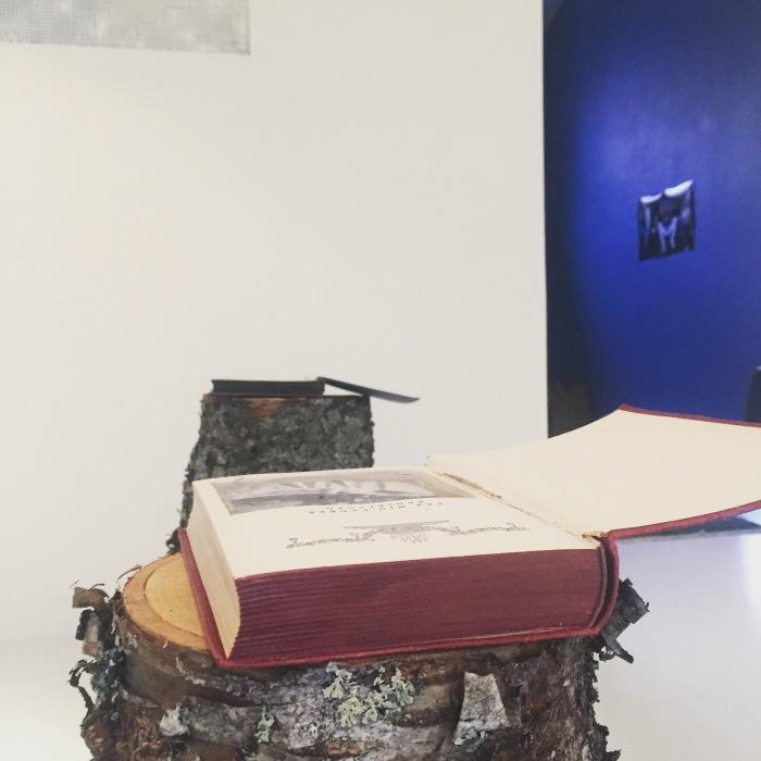 Utsnitt fra Karin Kristine Gaulins installasjon i årets avgangsutstilling.