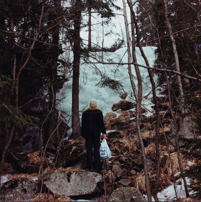 Torbjørn Rødland, I et norsk landskap 3, 1993. Tilhører Nasjonalmuseet for kunst, arkitektur og design.