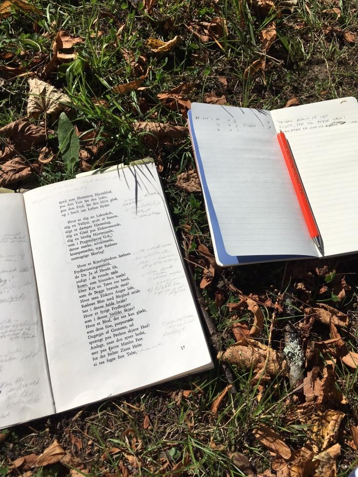 Flere av cyanotypiene i prosjektet er laget mens Lønseth har lest Wergelands tekst utendørs, blant annet i Lønseths egen hage.