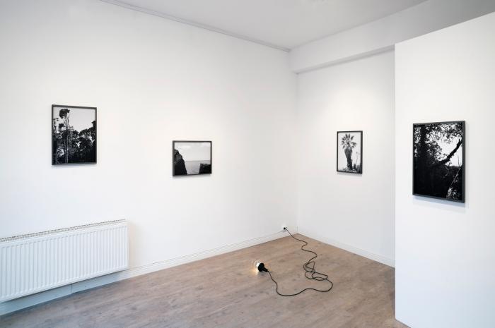 """Installasjonsfoto fra utstillingen """"Tankar om Västvärldens Vishet"""" på Breadfield, Malmö."""